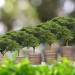 L'investimento etico [#02]